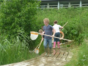 Pond dipping at Cilgerran