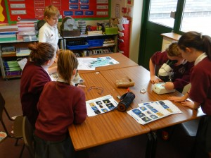 Plankton workshop